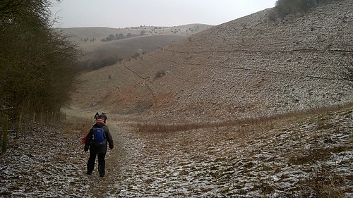 Wintry Descent in the Barton Hills