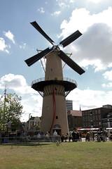 Schiedam - molen De Kameel 3765