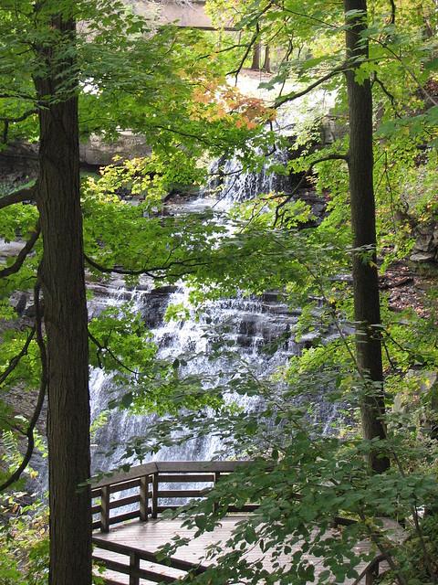 Brandywine Valley Nature Center