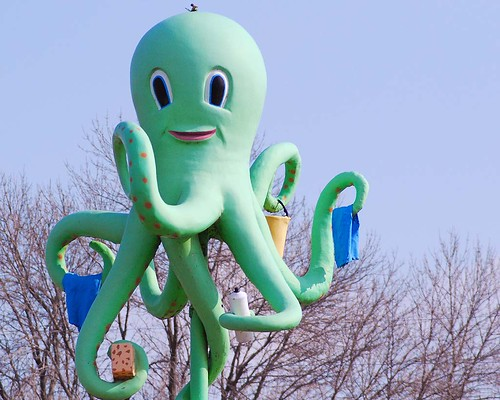 Why Do You Need a DSLR to Make A Digital Image of a Rotating Octopus?
