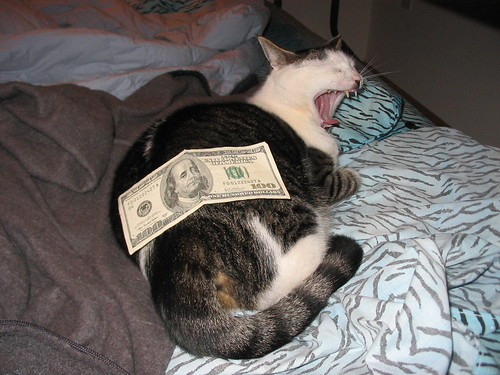Cats Rolling in Money Money Cat