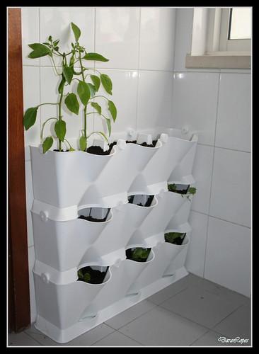 Un giardino verticale fai da te germogli parole - Giardino verticale fai da te ...