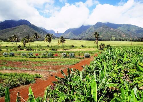 travel blue vacation sky mountains green clouds landscape island hawaii maui cropped 500views zipline picnik wailuku 2011 westmauimountains reala400 discoveryphotos mauizipline