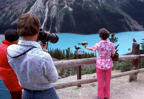 Tour Stop (11) Peyto Lake AB - July 1977