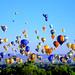 Ballooning Over Albuquerque by JadeXJustice