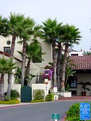 california loan