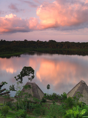 travel pink sunset sky lake reflection latinamerica southamerica nature clouds ecuador amazon rainforest dusk pastel olympus lagoon huts adventure jungle tropical palapa oriente napo tropics equator amazonas lavendar ecotourism e500 ecolodge rionapo napowildlifecenter thatchhuts yasuninationalpark tanagerphoto