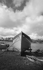 Standing Proud, Hooe Lake, Plymouth
