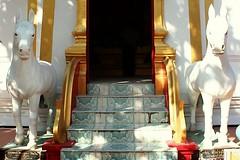 20101213_4336 Temples at San Pa Tong, วัดทึ่สันป่าตอง