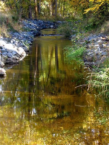 reflection water creek landscape stream unature diamondclassphotographer flickrdiamond