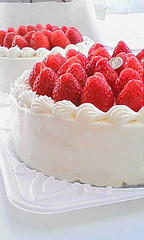 plant(0.0), raspberry(0.0), pavlova(1.0), semifreddo(1.0), bavarian cream(1.0), buttercream(1.0), strawberry(1.0), whipped cream(1.0), frutti di bosco(1.0), produce(1.0), fruit(1.0), food(1.0), icing(1.0), cheesecake(1.0), torte(1.0), cuisine(1.0), cream(1.0),