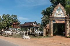 20161228 Cambodia 04983 2
