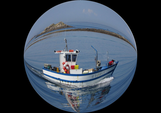 Goldfish bowl definition meaning for Sustainable fishing definition