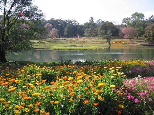 National Kandawgyi Botanical Gardens - Pyin U Lwin - Myanmar (Burma)