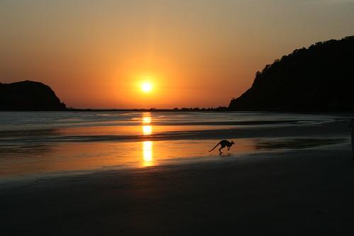 Cape Hillsborough at Sunrise, Queensland