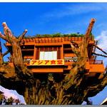 アジア食堂 那覇 沖縄  Asia Restaurant in Naha, Okinawa