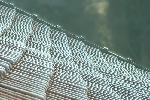 tuiles givrées / frosty tiles