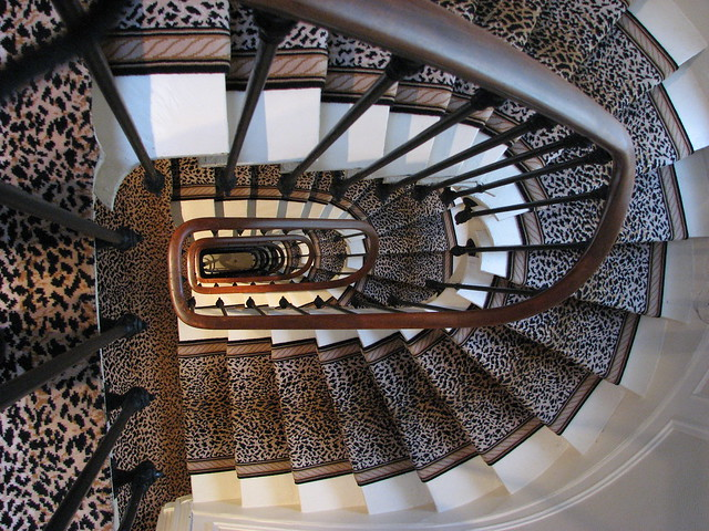 Royal magda hotel stairway love the leopard print carpet - Alfombras animal print ...
