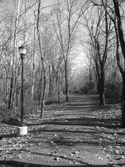 Linear Trail in Erwin, Tennessee