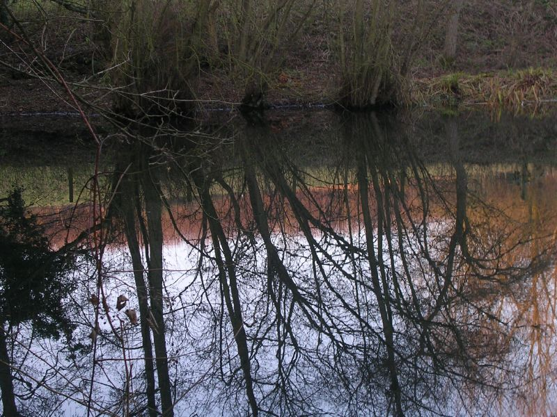 clear reflection Yalding to Borough Green