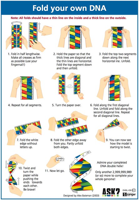 Image Result For How To Fold