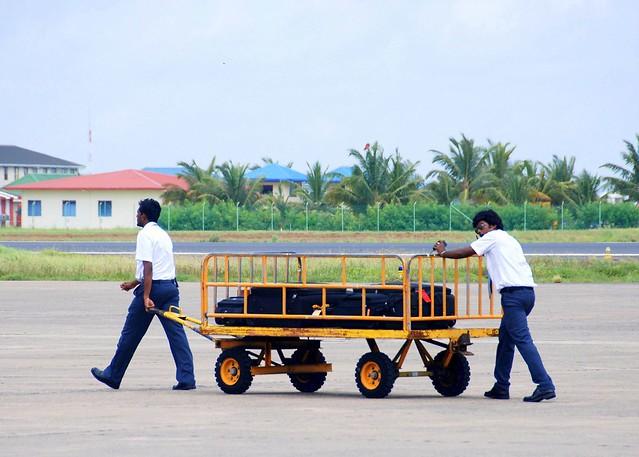 荷物を運ぶスタッフ