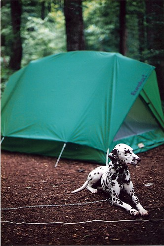 Testing Camping Equipment