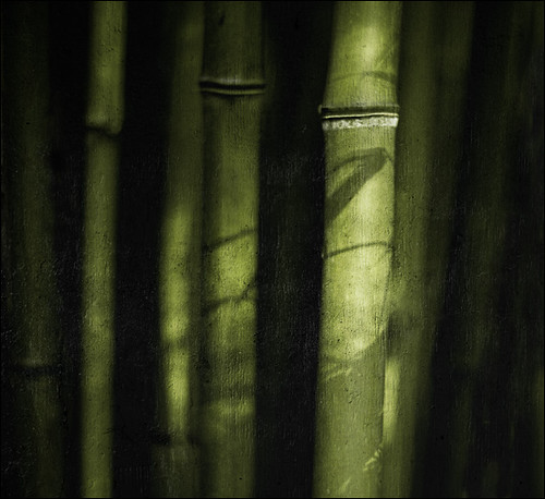 . Tales From The Rice Bowl - Bamboo Story .