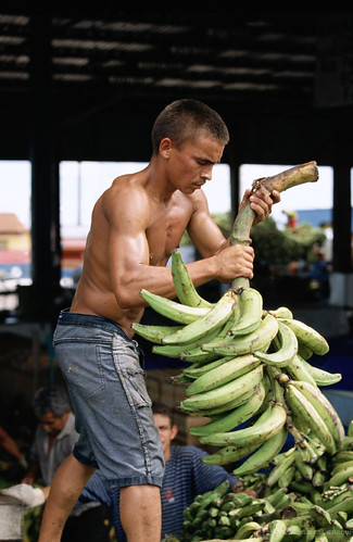 Day workers unload bananas in an open air market in Manaus, Brazil. Photo: © Julio Pantoja / World Bank