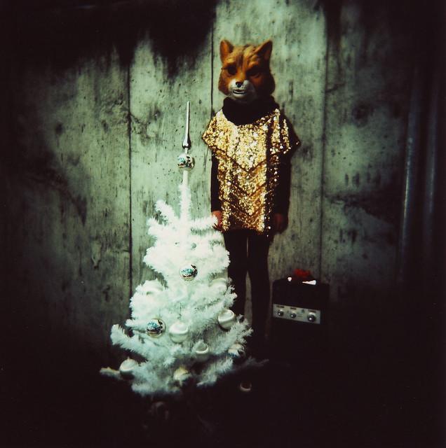 xmas fox (is creepywonderful)