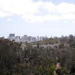 San Diego Zoo 076