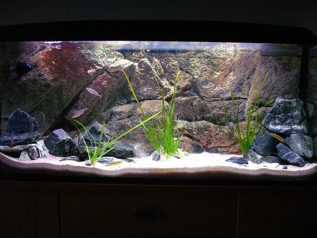 Realistic Plastic Aquarium Plants