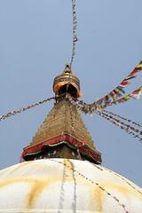 temple(0.0), tower(0.0), steeple(1.0), stupa(1.0),