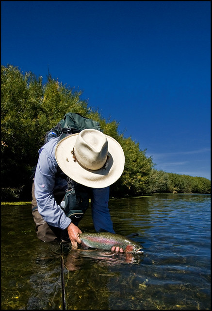 Montana fly fishing beaverhead river flickr photo for Beaverhead river fly fishing