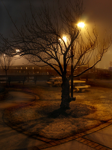 fog night massachusetts tripod foggy calm northshore beverly foggynight 2508 picnicarea canona630