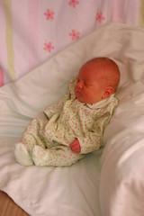 Baby photo op