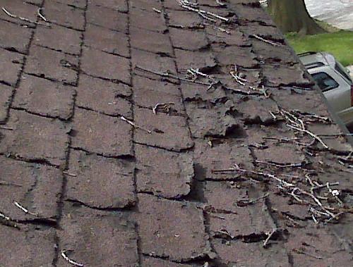Roof Shingle Damage Flickr Photo Sharing