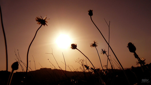sunsets panama vicky magicmoments mywinners