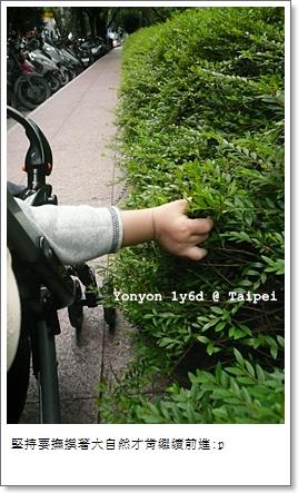 20071018_yonyon_021f