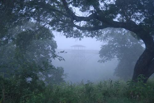 mist nature landscape moranch presbyterian