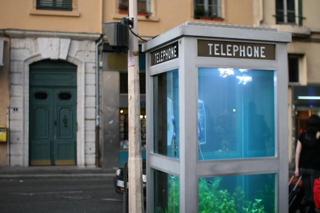 Phone Booth Aquarium Flickr Photo Sharing