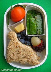 Dinosaur sandwich bento lunch for preschooler