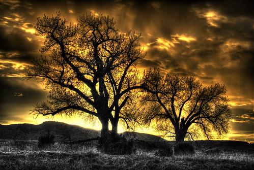 trees sunset lake silhouette clouds colorado denver chatfield hdr littleton photomatix 200805