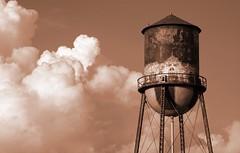 Sky Tower Sepia