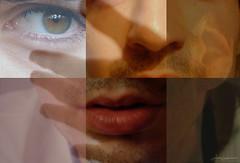 ¿Cuáles son los órganos de los 5 sentidos?