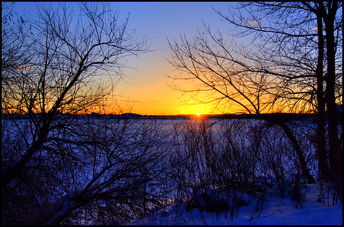blue trees orange sun sunlight snow sunshine silhouette yellow sunrise landscape colorado branches denver littleton 200712