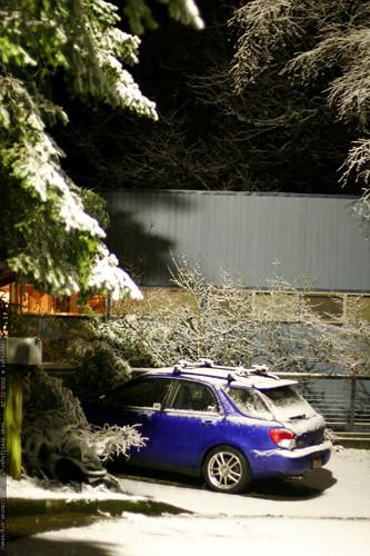 overnight snowfall    MG 9384