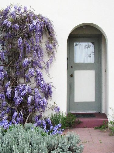 Wisteria & door