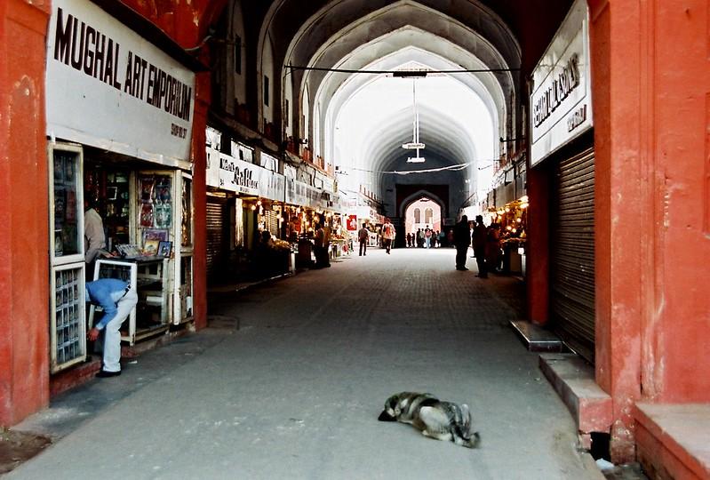India [Delhi]