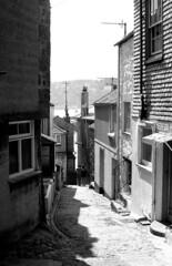 Black & White film & digital